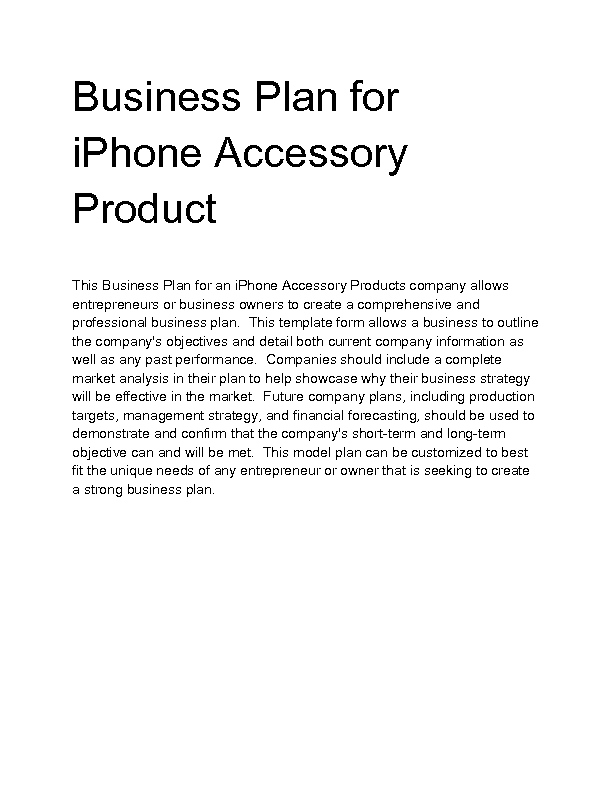 Accessory business plan